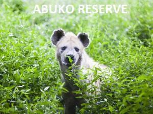 ABUKO RESERVE