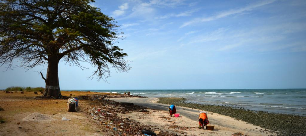 Barra Gambia