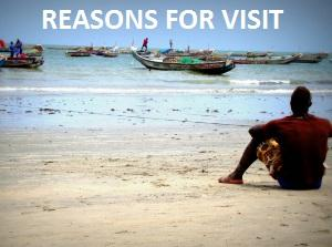 REASONS FOR VISIT