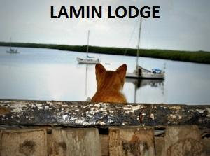 lamin lodge gambia
